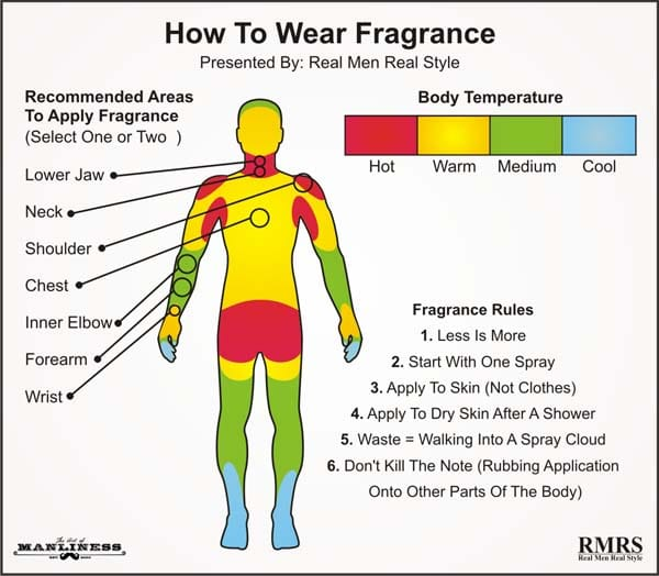 Fragrance Body Chart